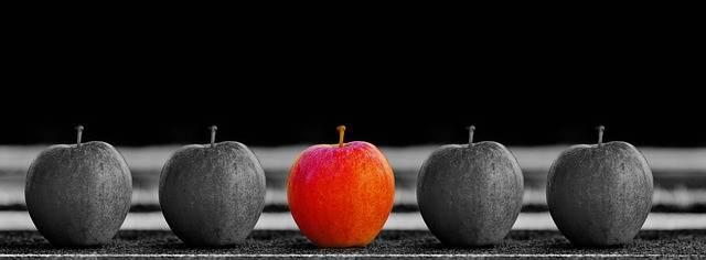 Apple Fruit Selection - Free photo on Pixabay (303384)
