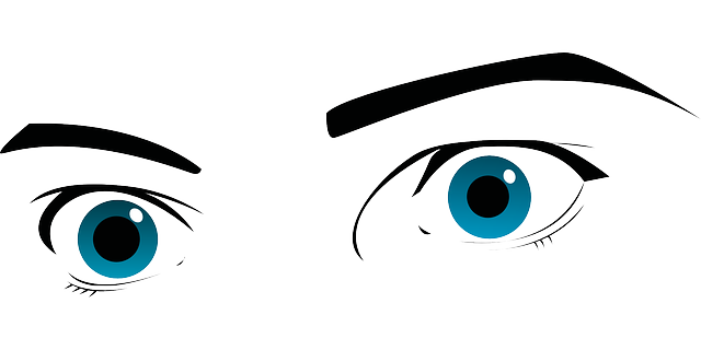 Eyes Blue Eyebrows - Free vector graphic on Pixabay (303416)