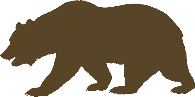 Bear Animal Brown - Free vector graphic on Pixabay (304627)
