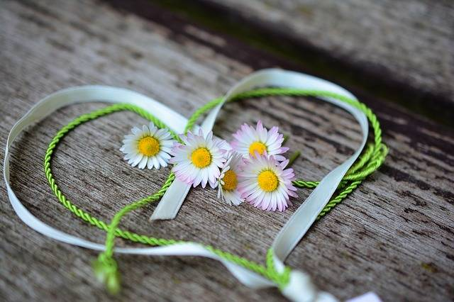 Daisy Heart Romance Valentine'S - Free photo on Pixabay (306971)