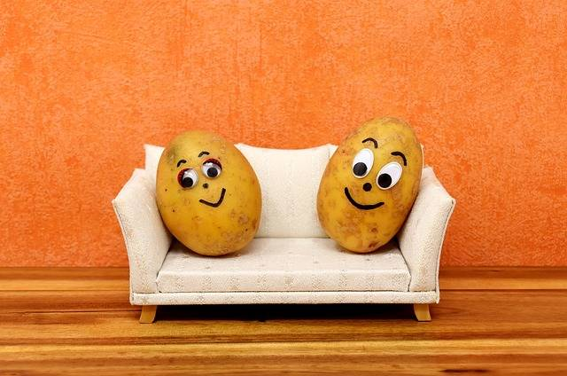 Couch Potatoes Funny - Free photo on Pixabay (311534)