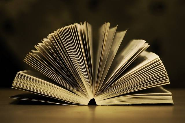 Book Open Pages - Free photo on Pixabay (319782)