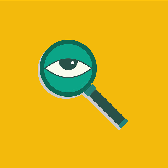 Search Look View - Free vector graphic on Pixabay (344934)