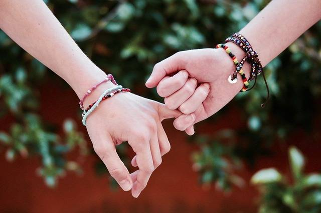 Friendship Hands Union - Free photo on Pixabay (346195)