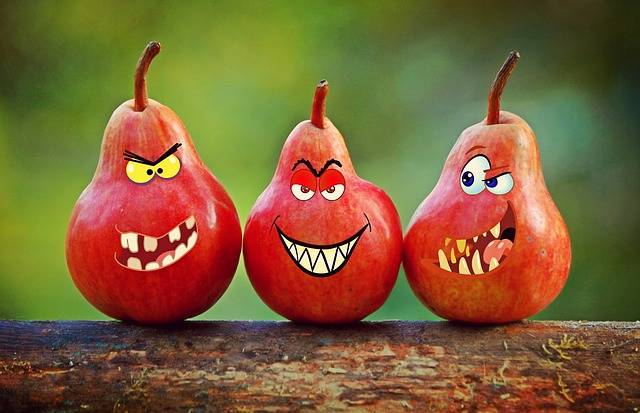 Pears Faces Grimassen - Free image on Pixabay (352874)