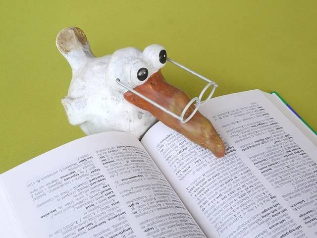 School Book Knowledge - Free photo on Pixabay (356400)