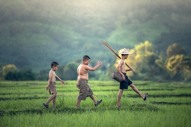 As Children The Activity Asia - Free photo on Pixabay (360360)