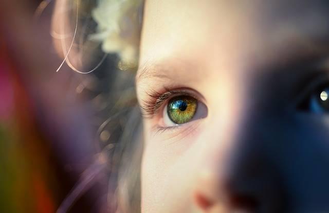 Girl Iris Eye - Free photo on Pixabay (365702)