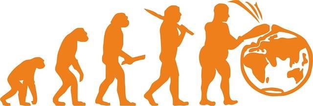 Evolution Planet Ecology - Free image on Pixabay (365996)