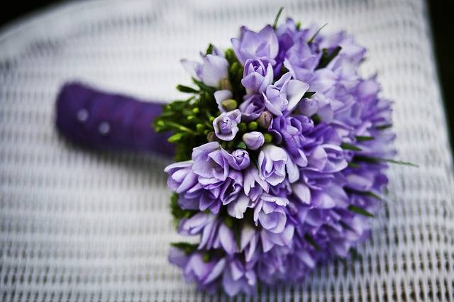 Marriage Flower Purple Flowers - Free photo on Pixabay (398715)