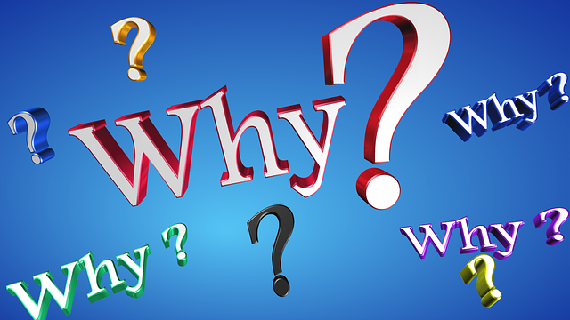 Why Text Question - Free image on Pixabay (402480)