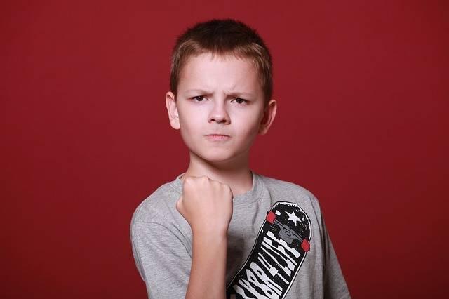 Boy Teen Schoolboy - Free photo on Pixabay (411765)