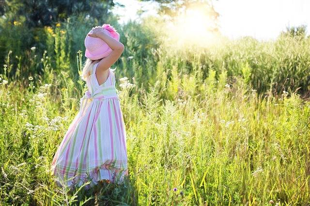 Little Girl Wildflowers Meadow - Free photo on Pixabay (432839)