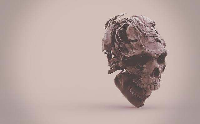 Skeleton Skull - Free photo on Pixabay (441450)