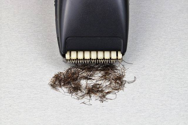 Razor The Long-Hair Cutter Shaver - Free photo on Pixabay (455350)