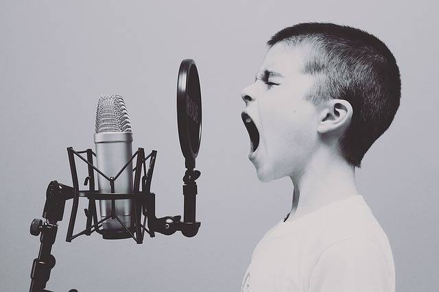 Microphone Boy Studio - Free photo on Pixabay (462570)