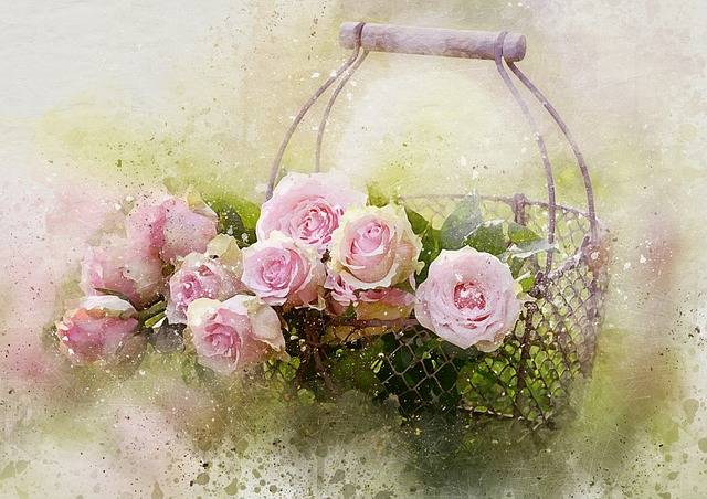 Watercolor Roses And Basket - Free image on Pixabay (479159)