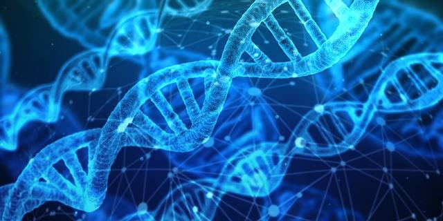 Dna Genetic Material Helix - Free image on Pixabay (484893)