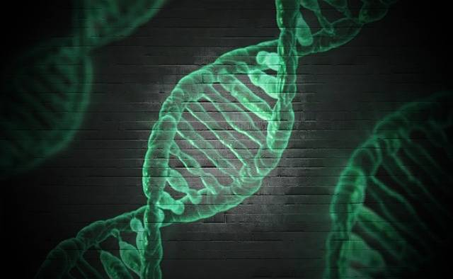Dna Microscopic Cell - Free image on Pixabay (485154)