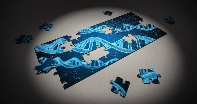 Puzzle Dna Research - Free photo on Pixabay (489783)