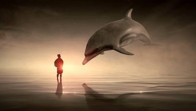 Fantasy Man Dolphin - Free photo on Pixabay (493096)