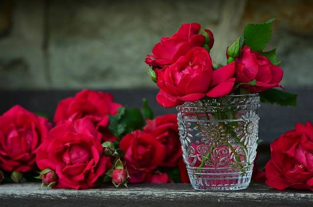 Roses Red Bouquet Of - Free photo on Pixabay (498124)