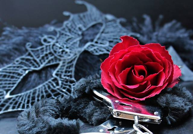Mask Handcuffs Roses Red - Free photo on Pixabay (498693)