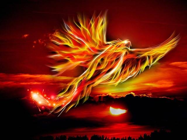 Phoenix Bird Fire - Free image on Pixabay (521211)