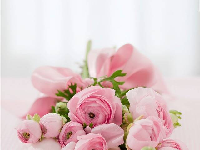 Roses Bouquet Congratulations - Free photo on Pixabay (523916)