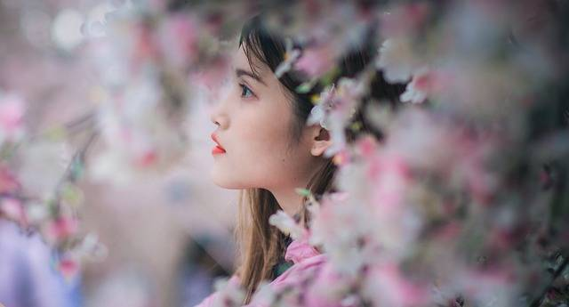 Girl Portrait Sakura - Free photo on Pixabay (525774)