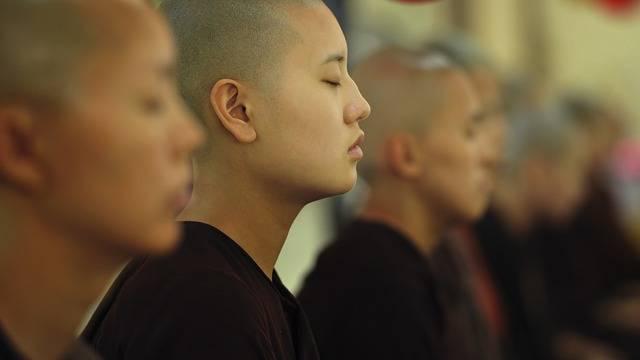 Theravada Buddhism Buddhist Nuns - Free photo on Pixabay (526701)