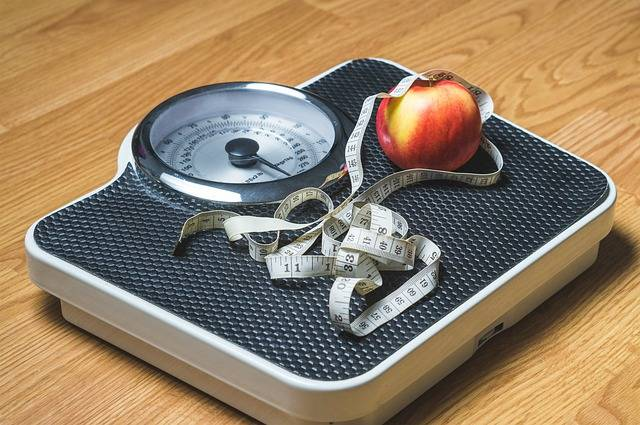 Weight Loss Nutrition - Free image on Pixabay (531417)