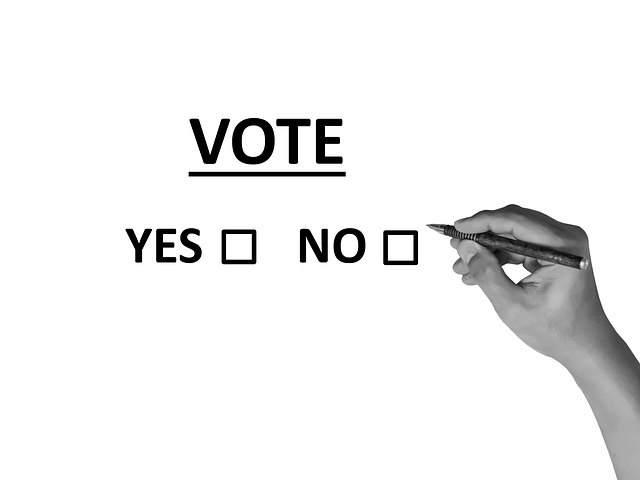 Vote Poll Election - Free image on Pixabay (534637)