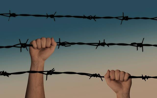 Hands Barbed Wire Caught - Free photo on Pixabay (561815)