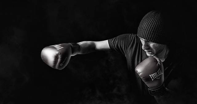 Box Sport Men - Free photo on Pixabay (617446)