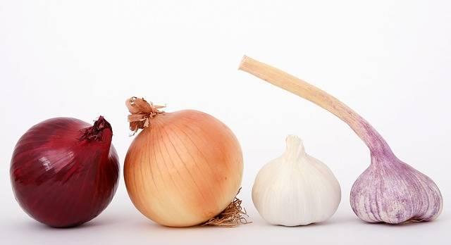 Food Onions Garlic - Free photo on Pixabay (706367)