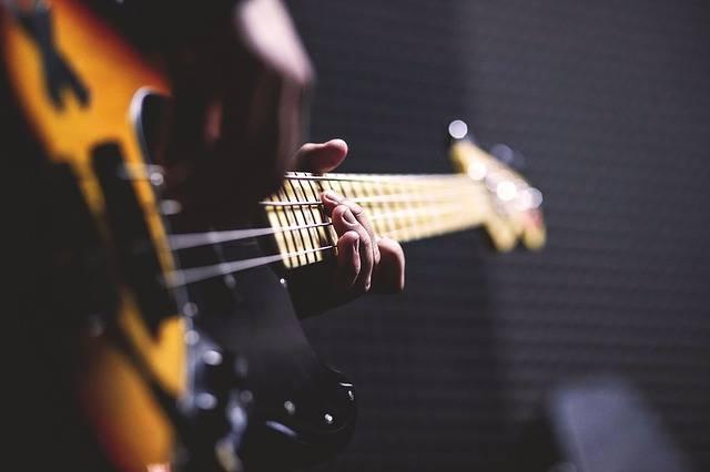 Bass Guitar Chord Close-Up - Free photo on Pixabay (714539)