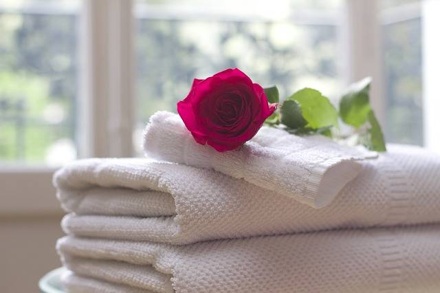 Towel Rose Clean - Free photo on Pixabay (718288)