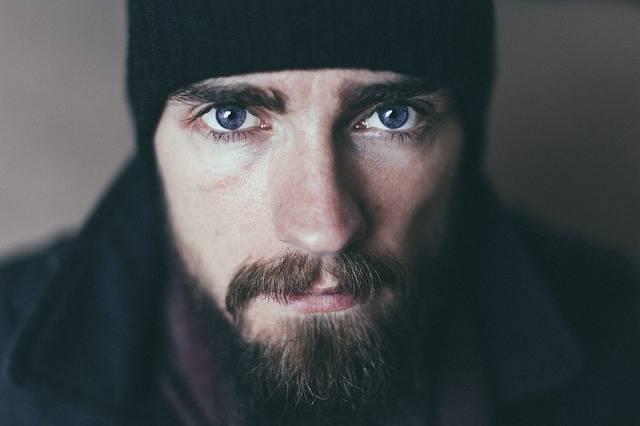 Beard Man Mustache - Free photo on Pixabay (719310)