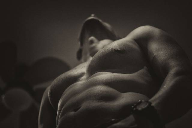 Naked Upper Body Fit - Free photo on Pixabay (737049)