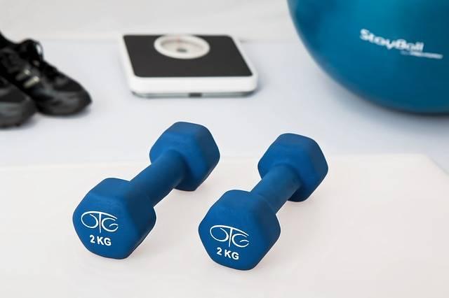 Physiotherapy Weight Training - Free photo on Pixabay (738315)