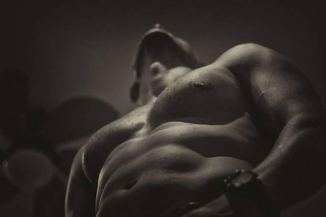 Naked Upper Body Fit - Free photo on Pixabay (739050)